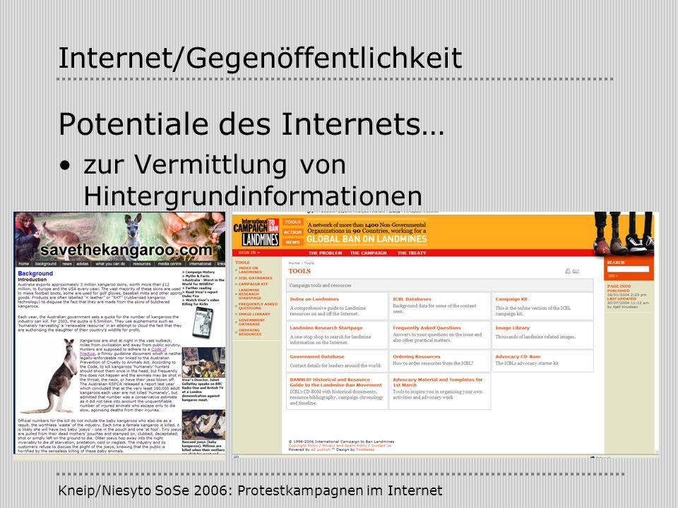 Internet/Gegenöffentlichkeit