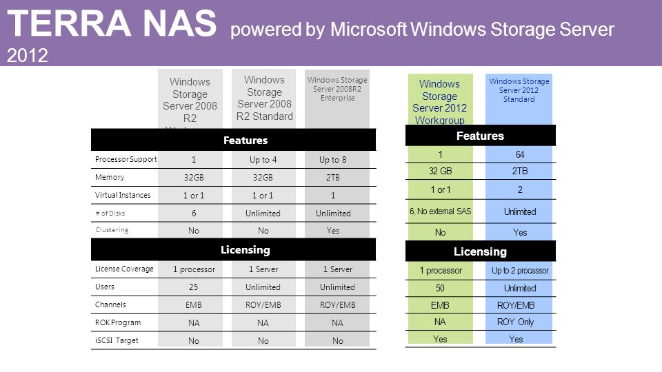 TERRA NAS powered by Microsoft Windows Storage Server 2012