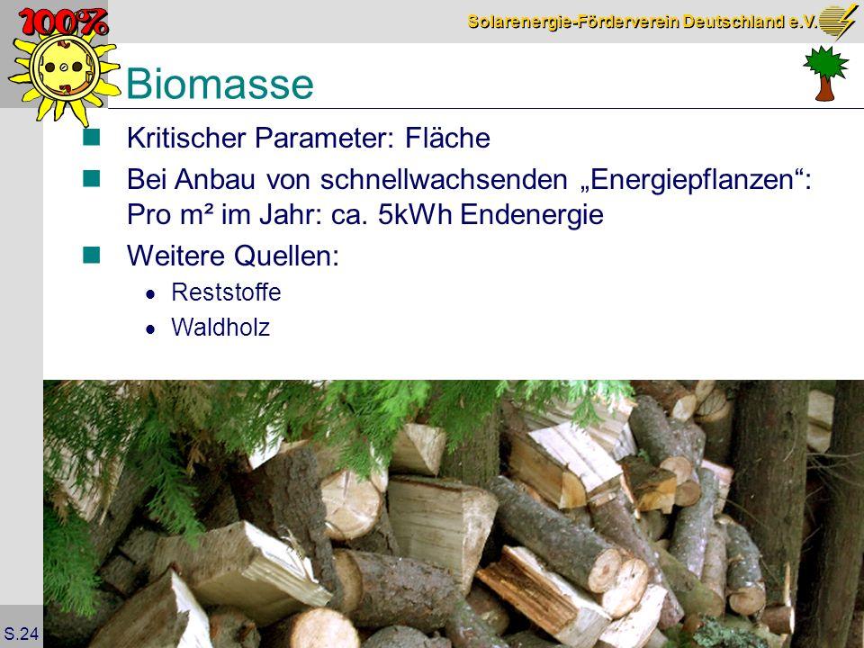 Biomasse Kritischer Parameter: Fläche
