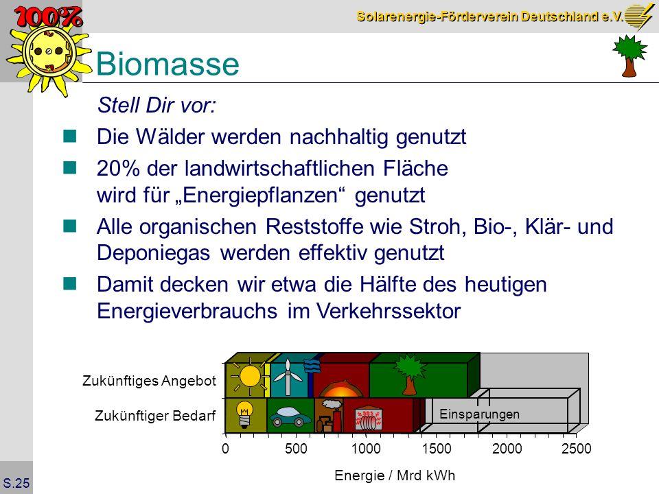 Biomasse Stell Dir vor: Die Wälder werden nachhaltig genutzt