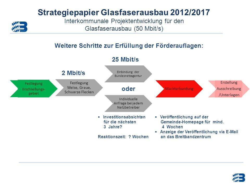 Weitere Schritte zur Erfüllung der Förderauflagen: