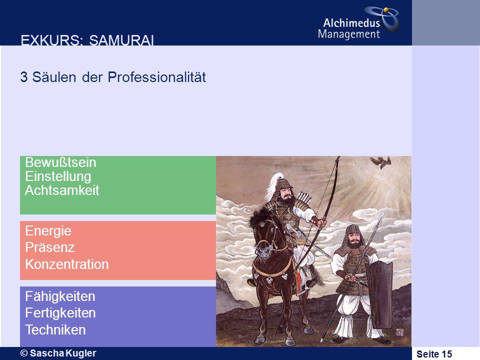3 Säulen der Professionalität