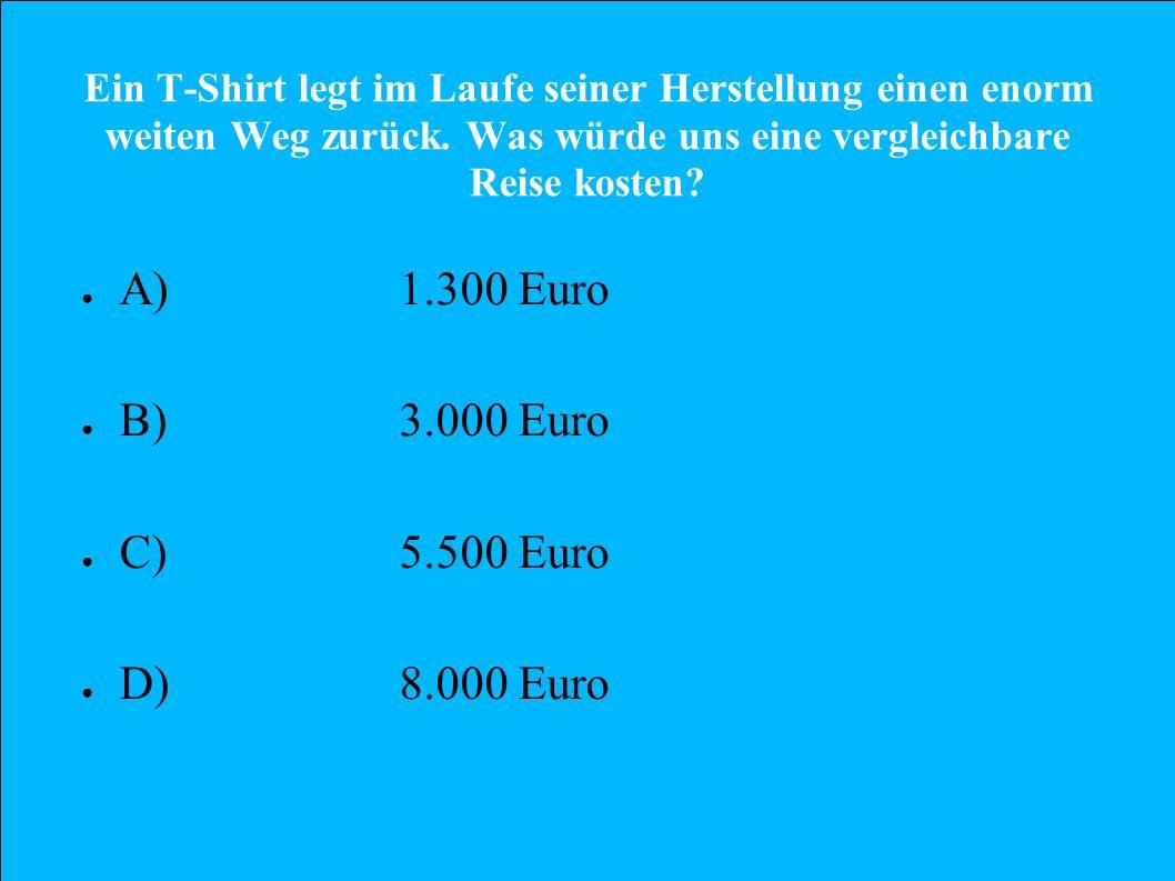 A) 1.300 Euro B) 3.000 Euro C) 5.500 Euro D) 8.000 Euro
