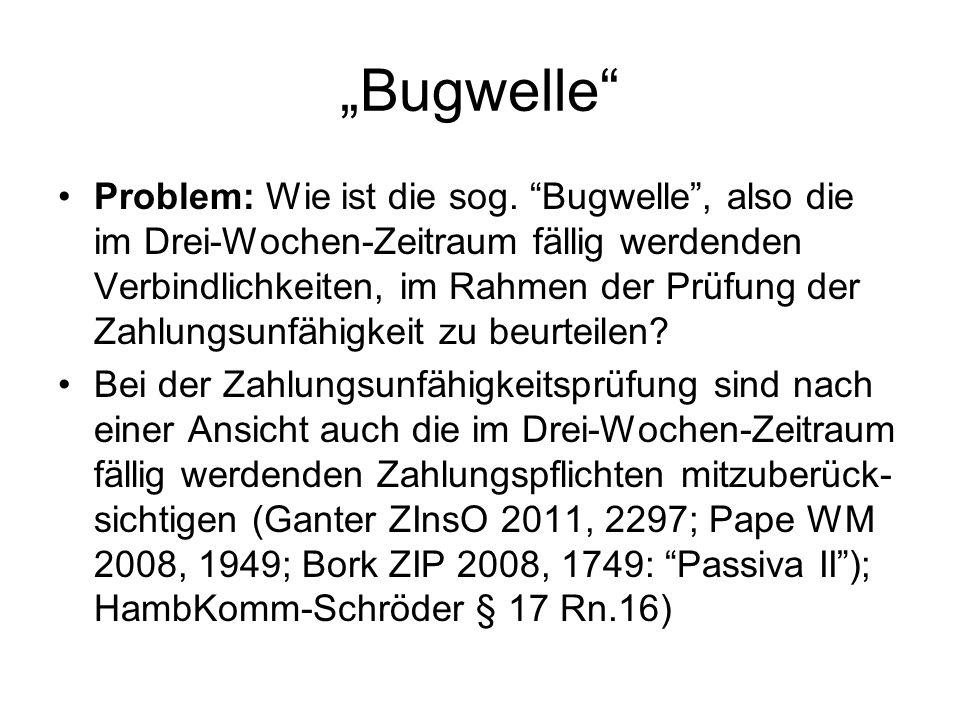 """""""Bugwelle"""