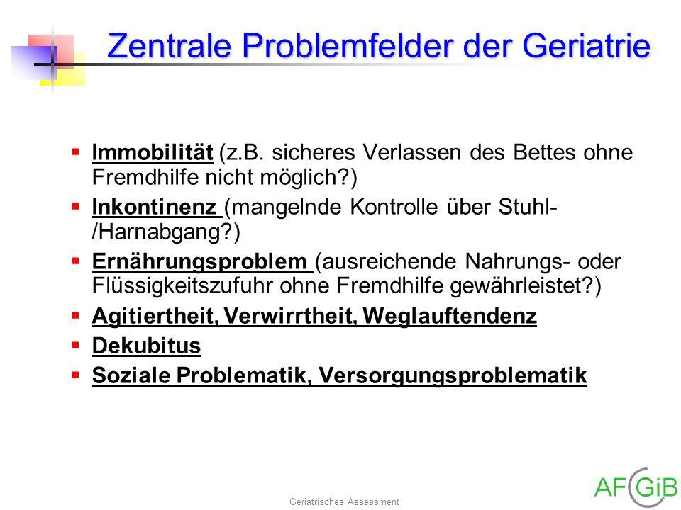 Zentrale Problemfelder der Geriatrie