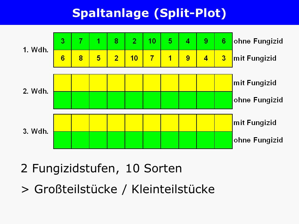 Spaltanlage (Split-Plot)