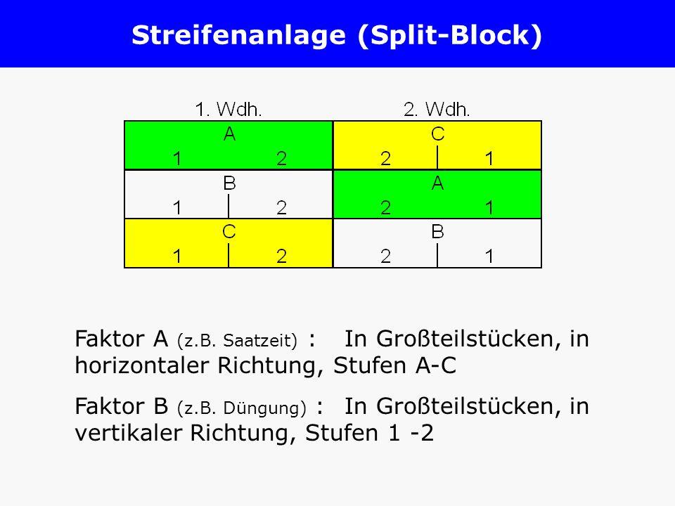 Streifenanlage (Split-Block)