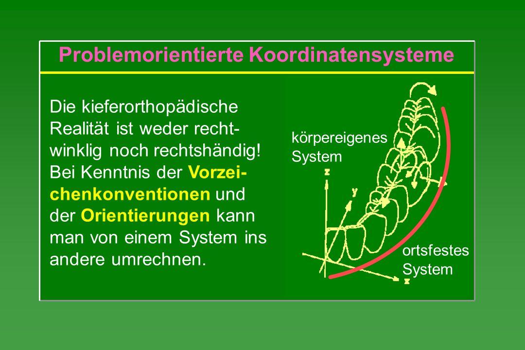 Problemorientierte Koordinatensysteme