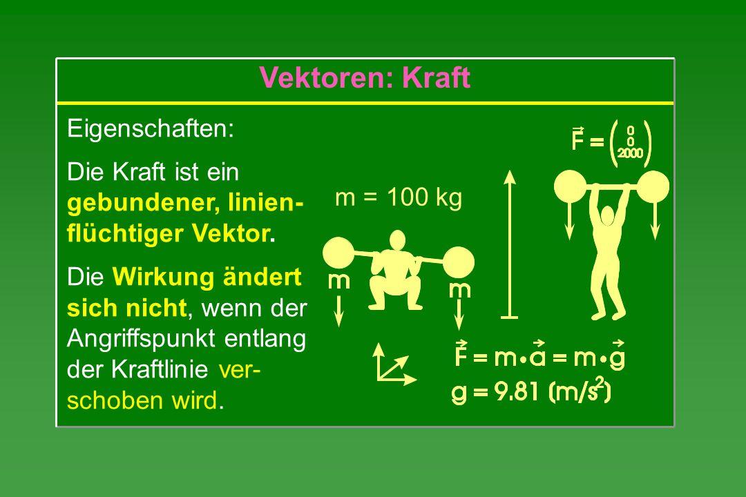 Vektoren: Kraft Eigenschaften: