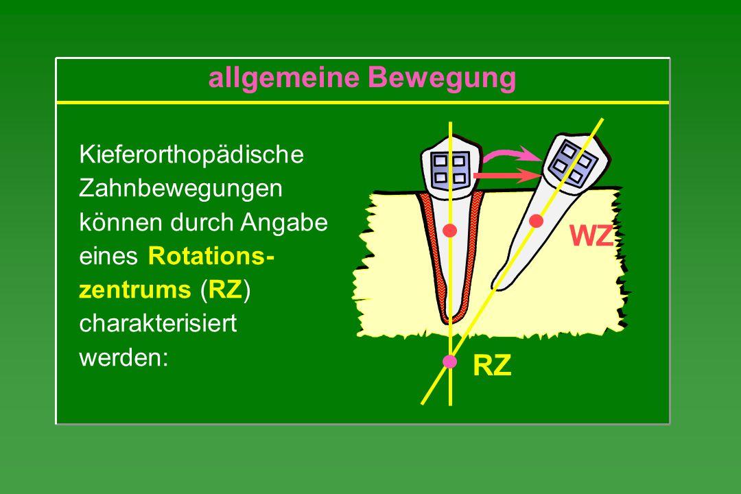 allgemeine Bewegung WZ RZ Kieferorthopädische Zahnbewegungen
