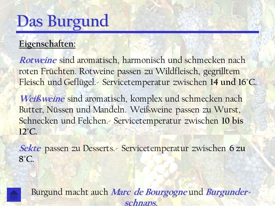 Burgund macht auch Marc de Bourgogne und Burgunder- schnaps.