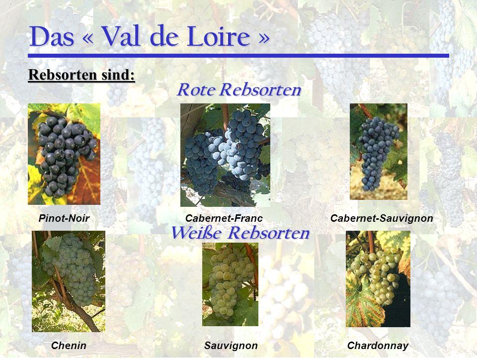 Das « Val de Loire » Rote Rebsorten Weiße Rebsorten Rebsorten sind: