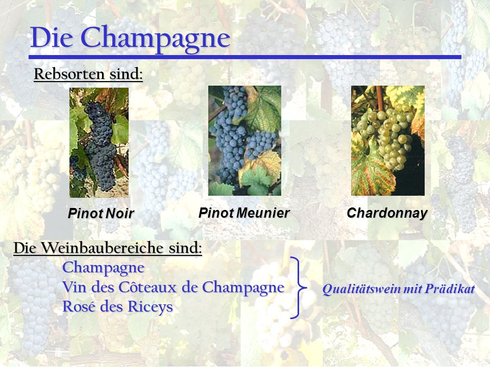 Die Champagne Rebsorten sind: Die Weinbaubereiche sind: Champagne