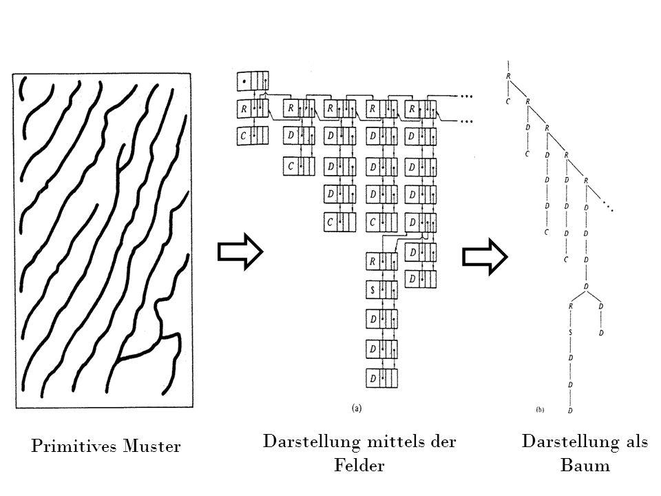 Darstellung mittels der Felder