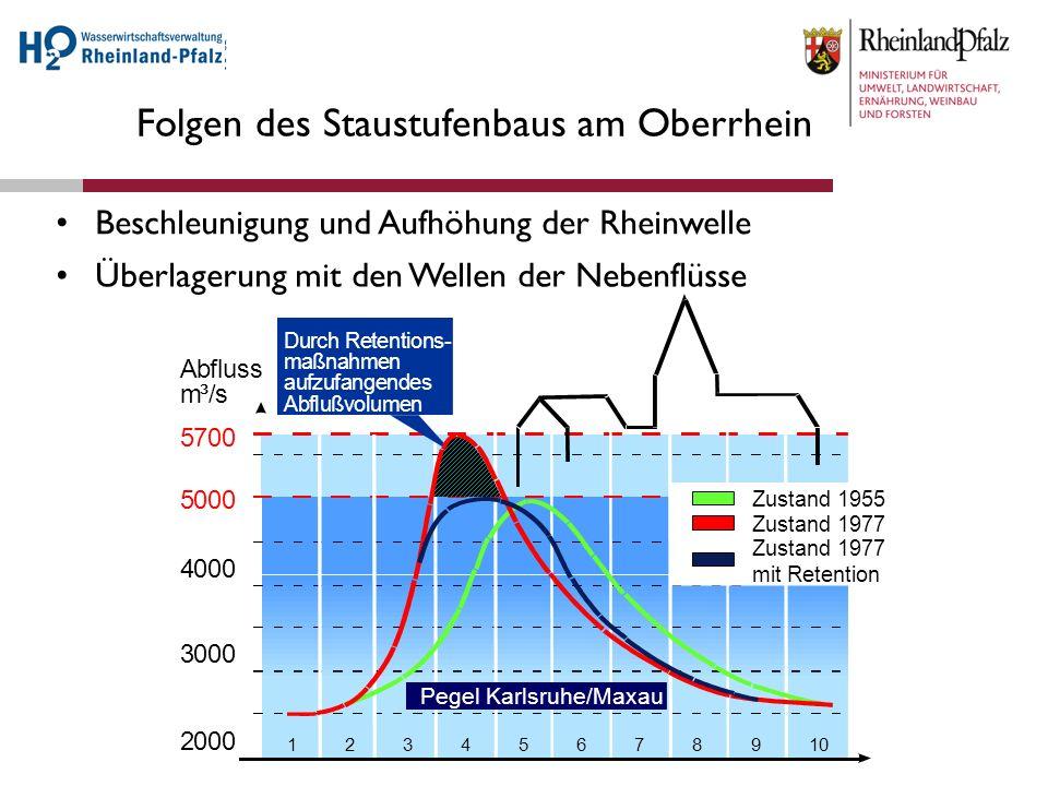 Folgen des Staustufenbaus am Oberrhein