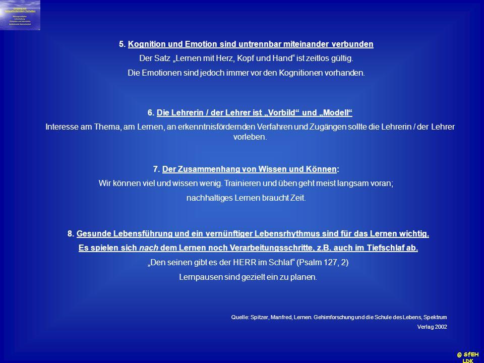 5. Kognition und Emotion sind untrennbar miteinander verbunden