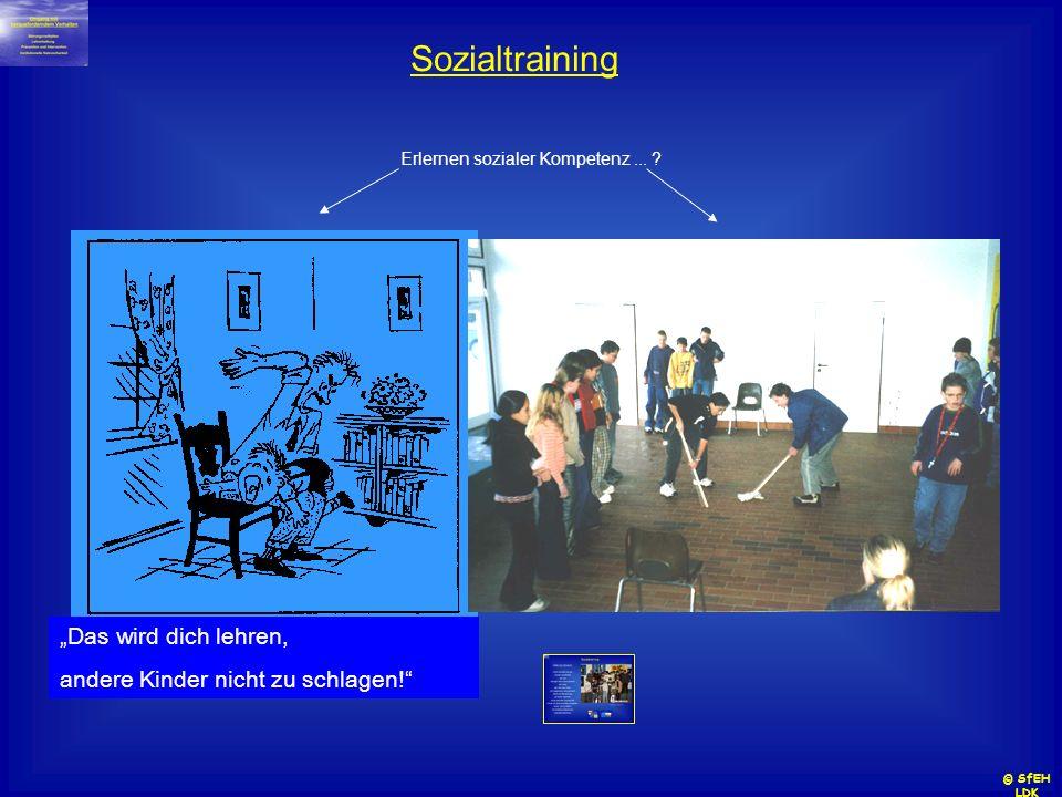 "Sozialtraining ""Das wird dich lehren,"