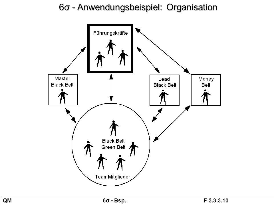 6σ - Anwendungsbeispiel: Organisation