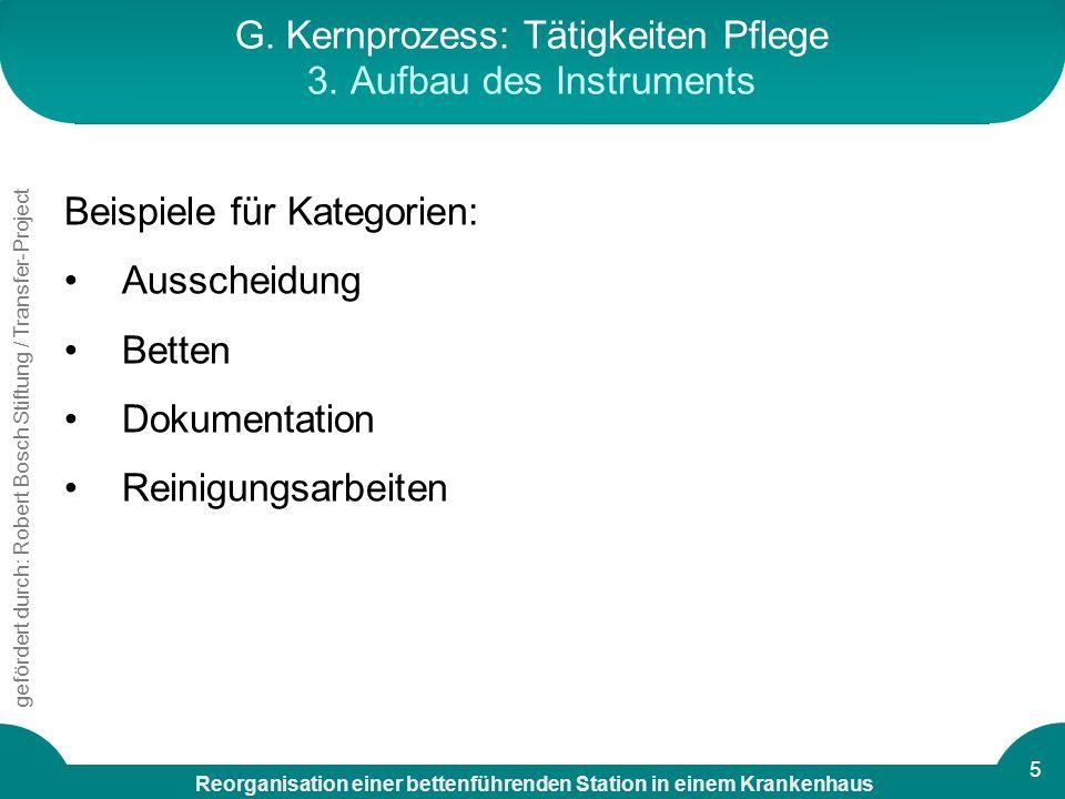 G. Kernprozess: Tätigkeiten Pflege 3. Aufbau des Instruments