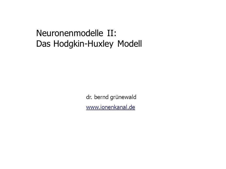 Das Hodgkin-Huxley Modell