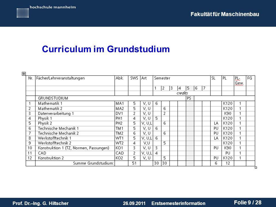 Curriculum im Grundstudium