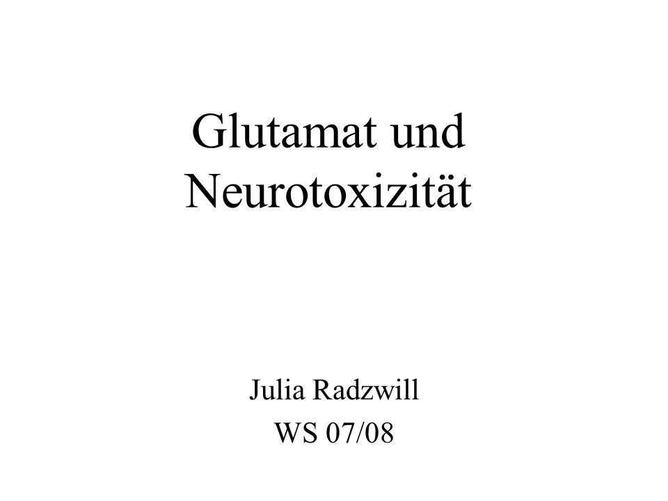 Glutamat und Neurotoxizität