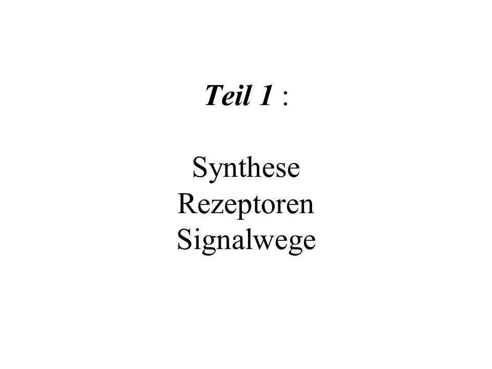 Teil 1 : Synthese Rezeptoren Signalwege