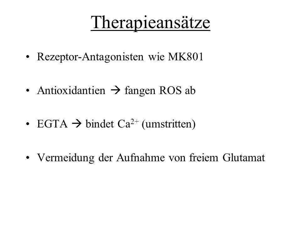 Therapieansätze Rezeptor-Antagonisten wie MK801