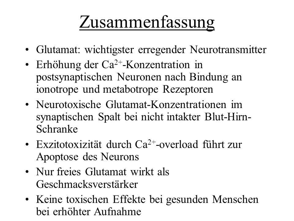 Zusammenfassung Glutamat: wichtigster erregender Neurotransmitter