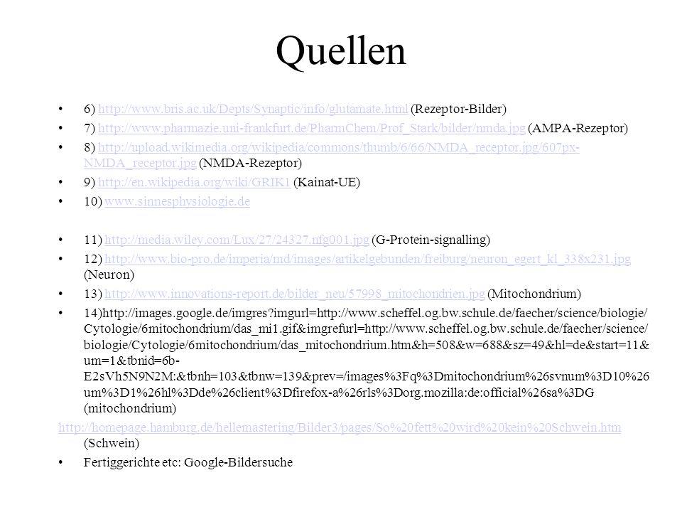 Quellen 6) http://www.bris.ac.uk/Depts/Synaptic/info/glutamate.html (Rezeptor-Bilder)