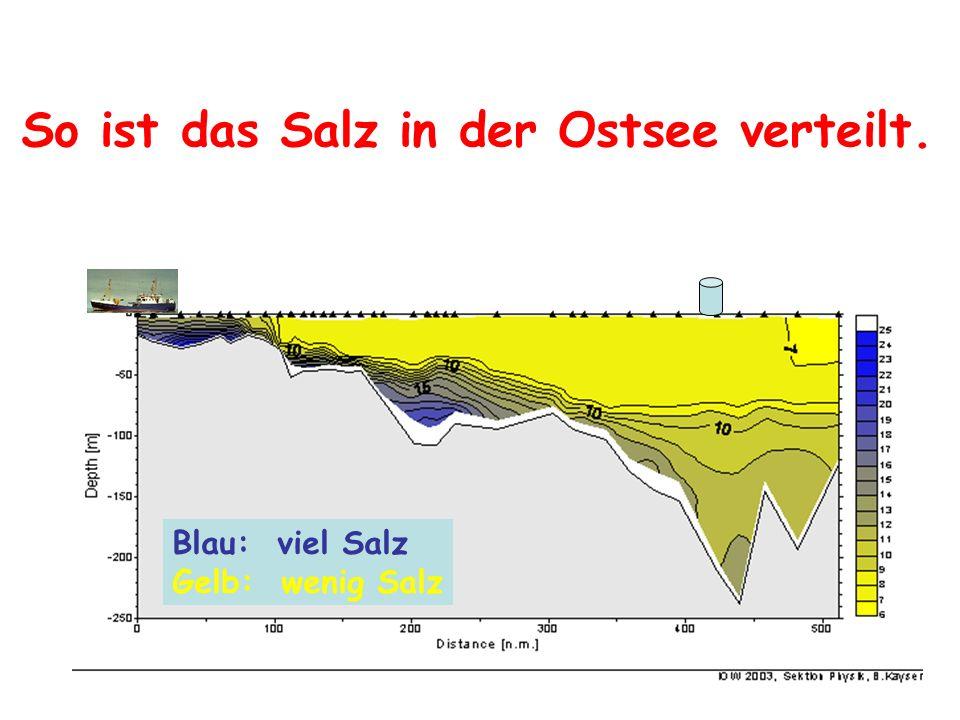 So ist das Salz in der Ostsee verteilt.