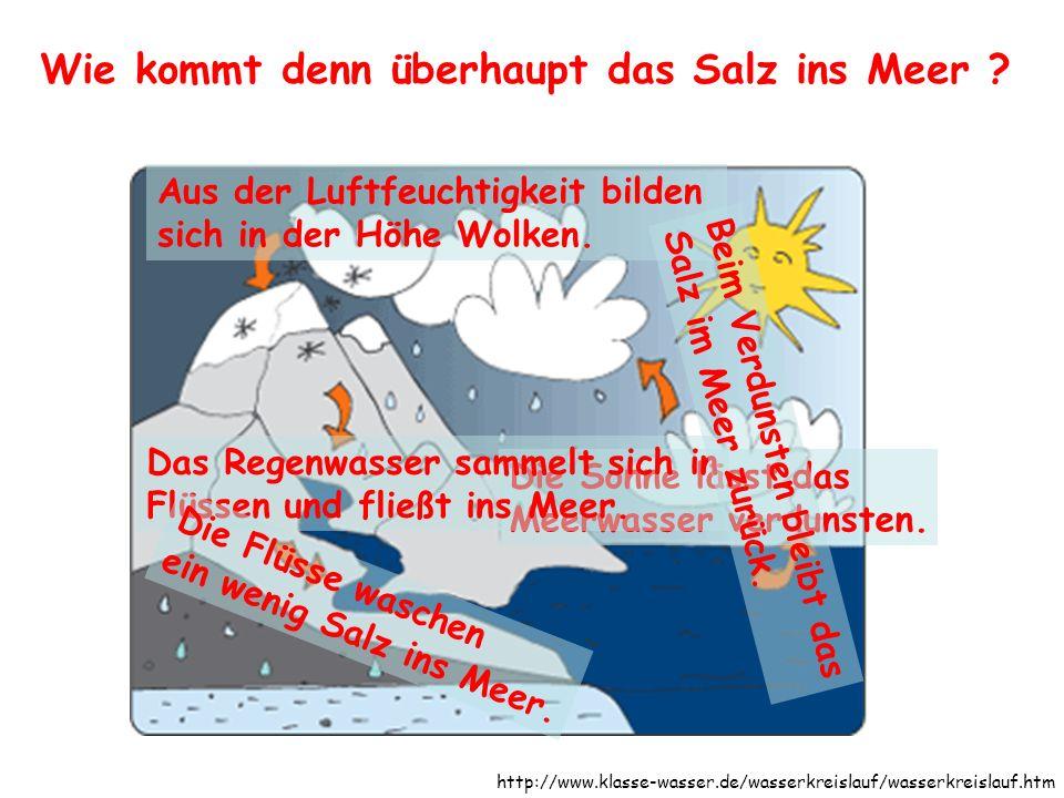 Wie kommt denn überhaupt das Salz ins Meer