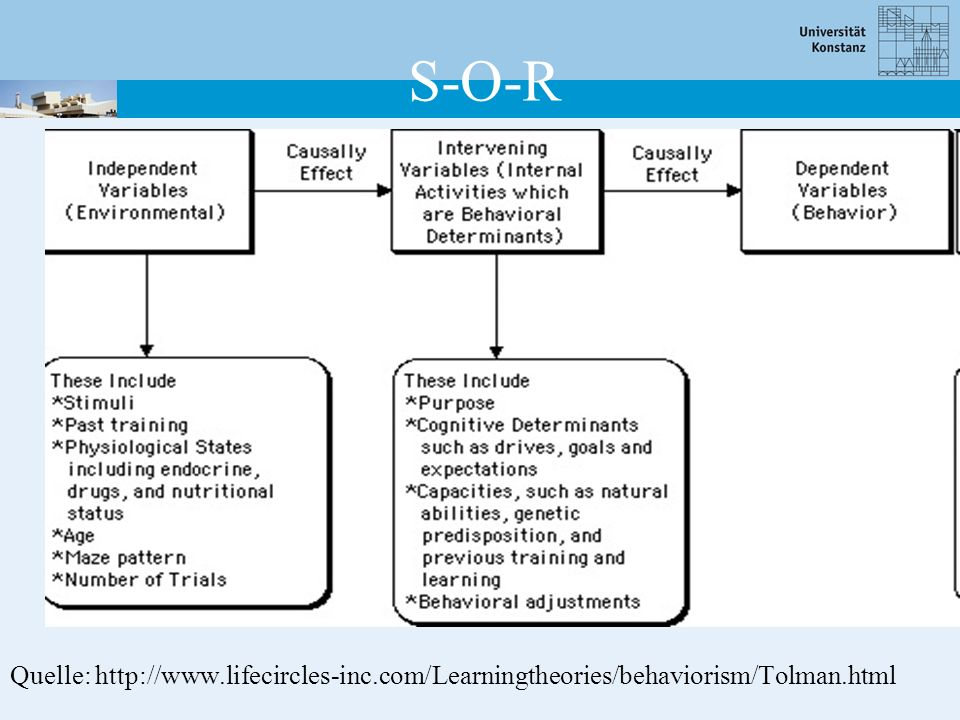 S-O-R Quelle: http://www.lifecircles-inc.com/Learningtheories/behaviorism/Tolman.html