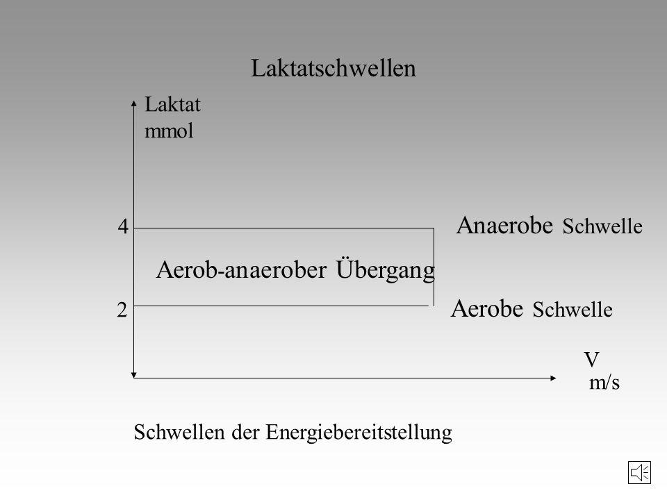Aerob-anaerober Übergang