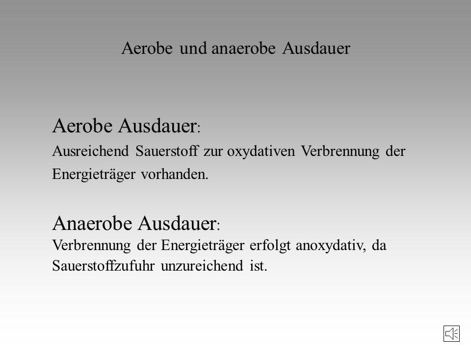 Aerobe und anaerobe Ausdauer