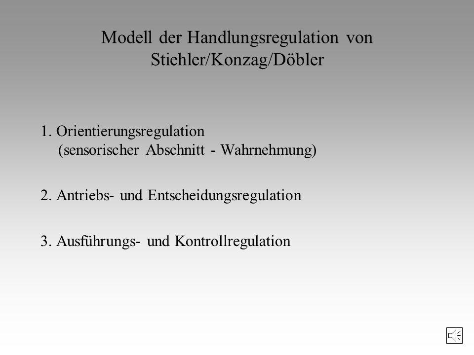 Modell der Handlungsregulation von Stiehler/Konzag/Döbler