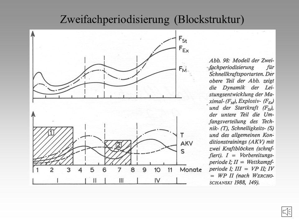 Zweifachperiodisierung (Blockstruktur)