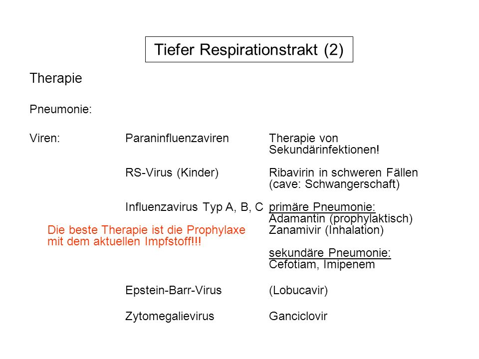 Tiefer Respirationstrakt (2)