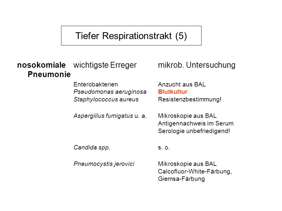 Tiefer Respirationstrakt (5)