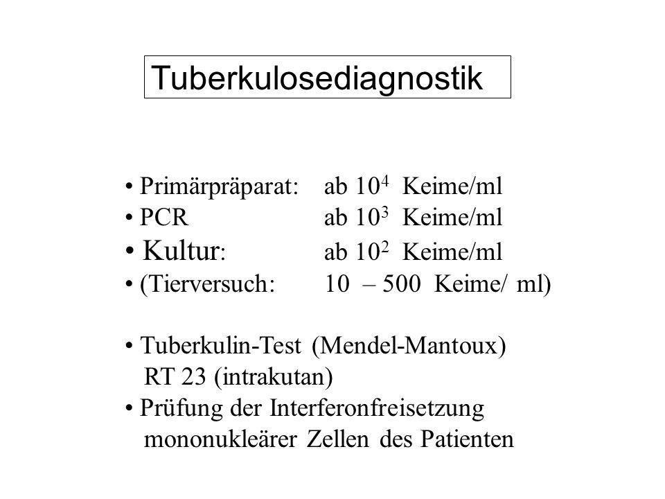 Tuberkulosediagnostik