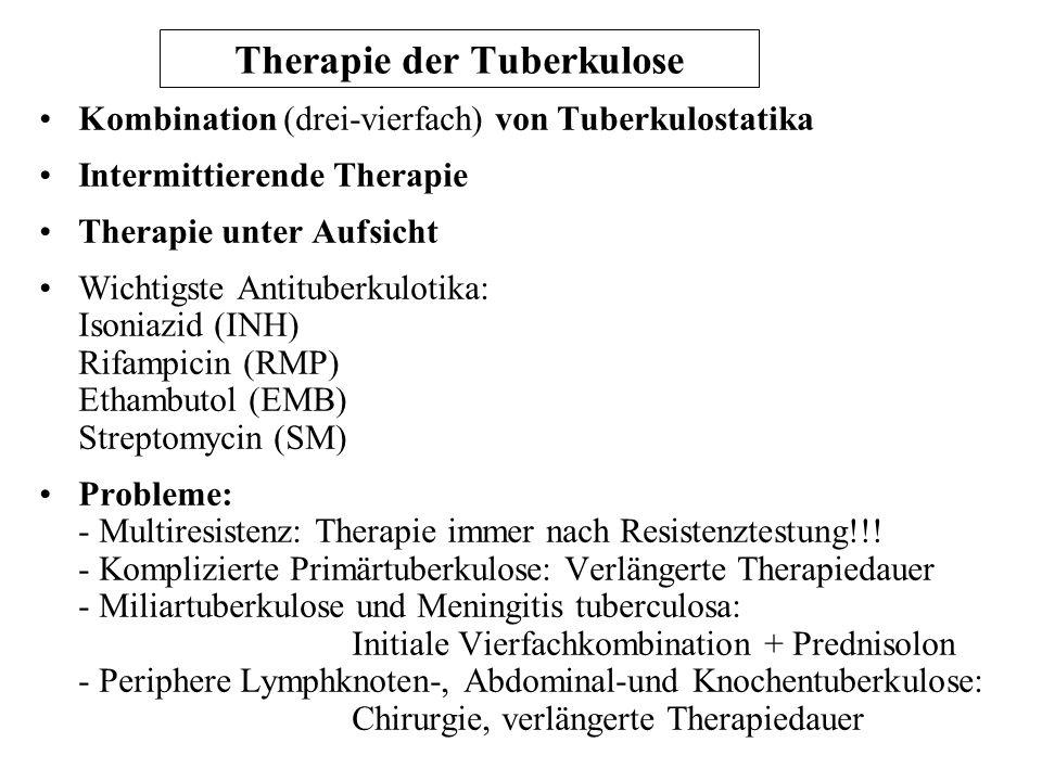 Therapie der Tuberkulose