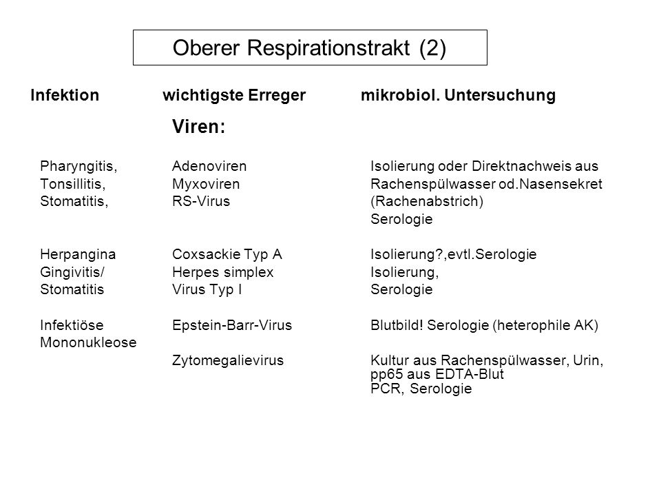 Oberer Respirationstrakt (2)