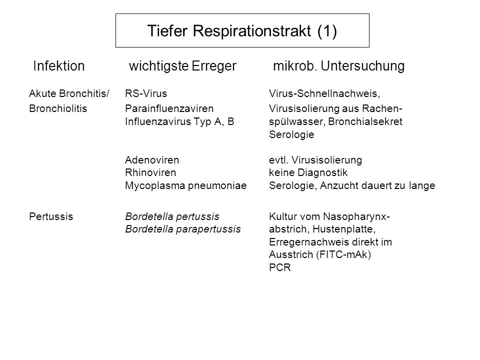 Tiefer Respirationstrakt (1)