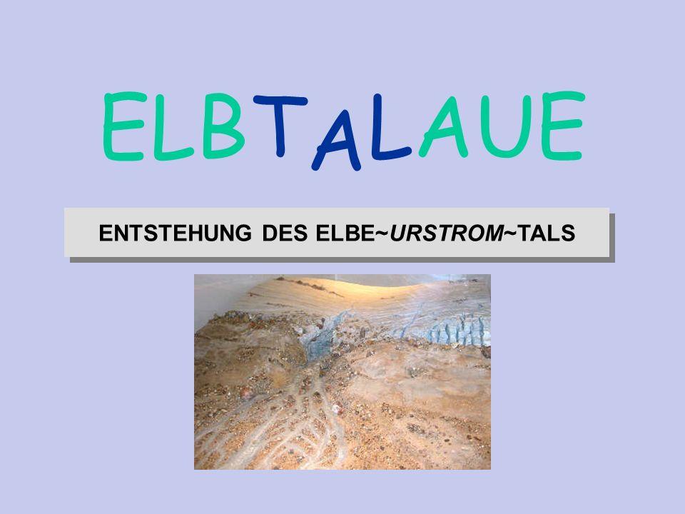 ENTSTEHUNG DES ELBE~URSTROM~TALS