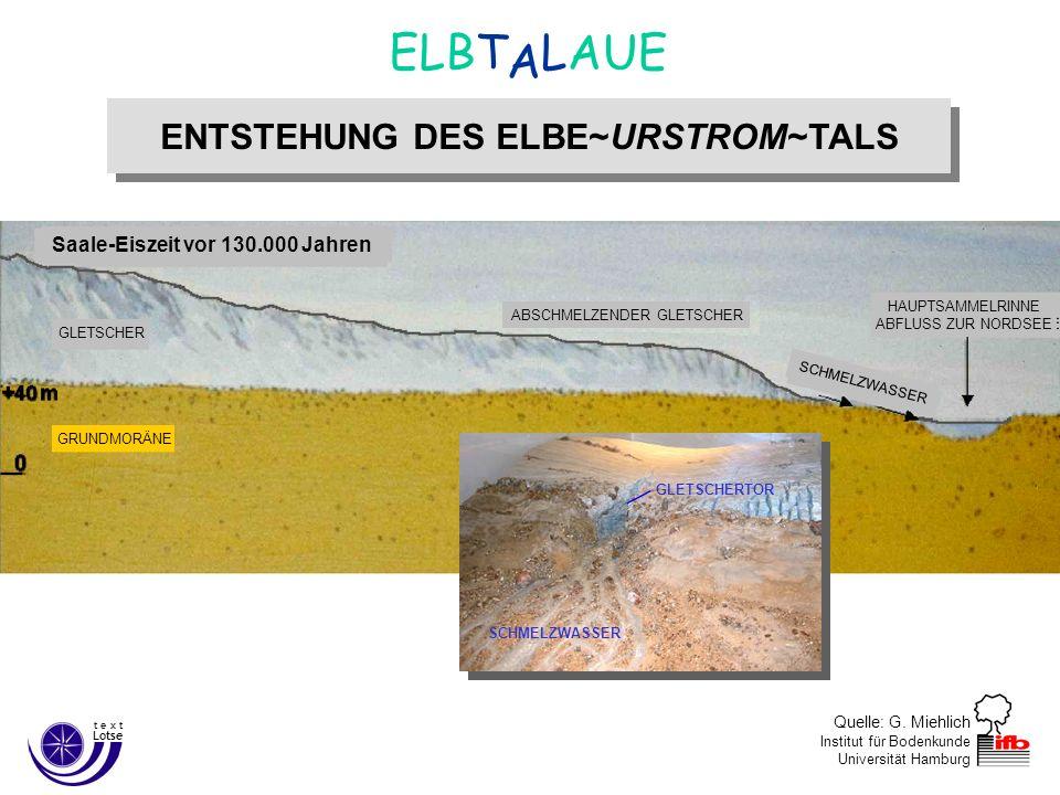 Saale-Eiszeit vor 130.000 Jahren