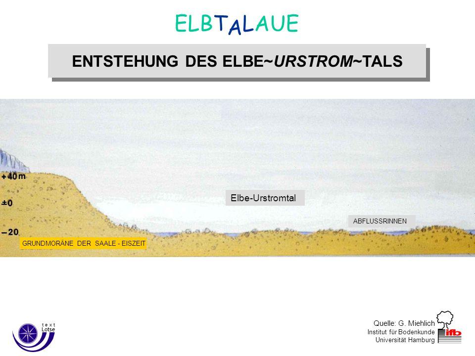 Ende der Weichsel–Eiszeit ca. 12.000 Jahre v. Chr.