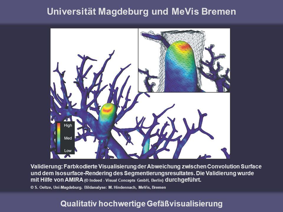 Universität Magdeburg und MeVis Bremen
