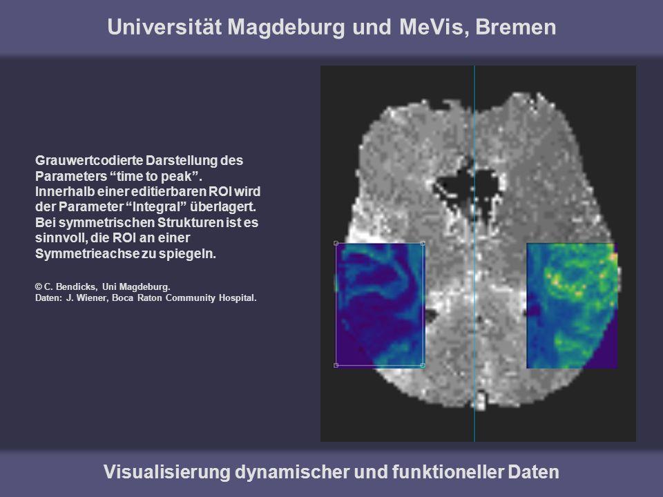 Universität Magdeburg und MeVis, Bremen