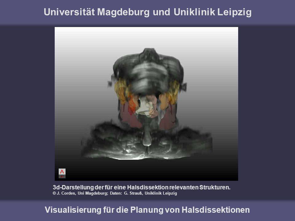 Universität Magdeburg und Uniklinik Leipzig