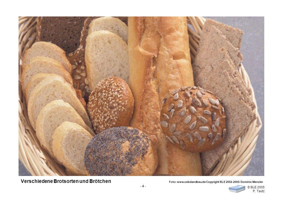 Verschiedene Brotsorten und Brötchen Foto: www. oekolandbau